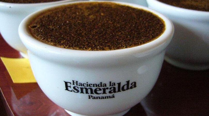 Hacienda la Esmeralda's Geisha Coffee