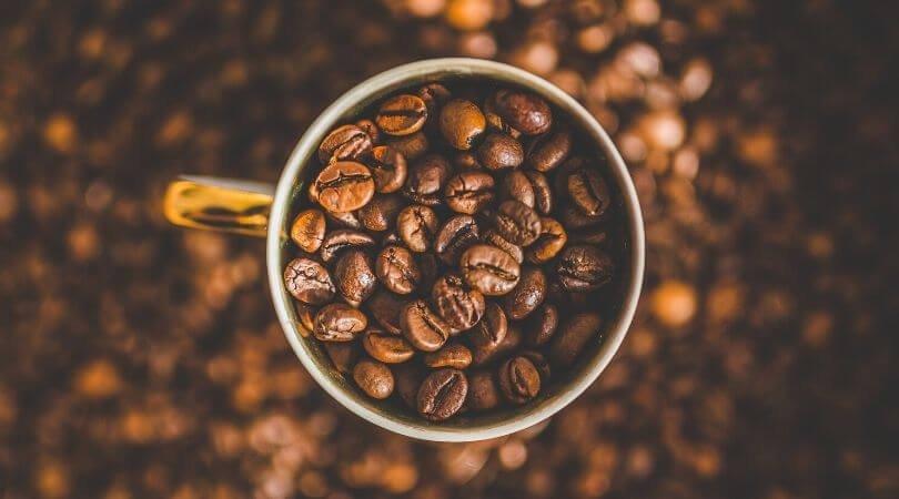 Kandungan kafein
