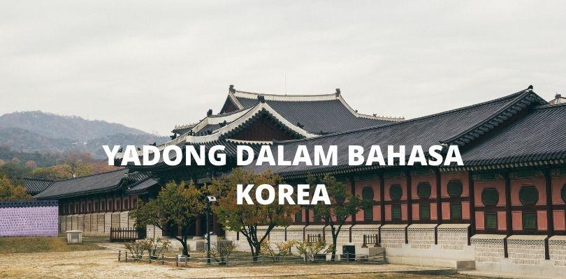 arti kata yadong dalam bahasa korea