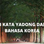 Arti Kata Yadong Dalam Bahasa Korea yang Viral